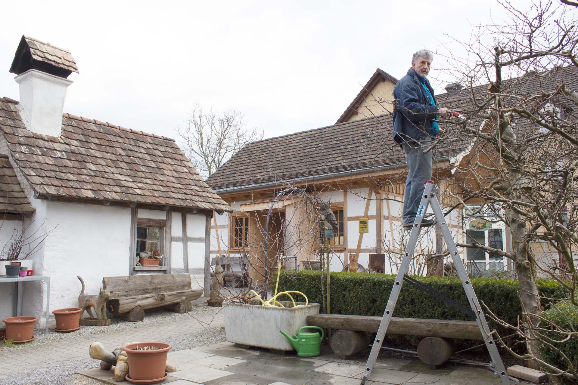 Baueme-schneiden-im-Bindersgarten-Tägerwilen-2