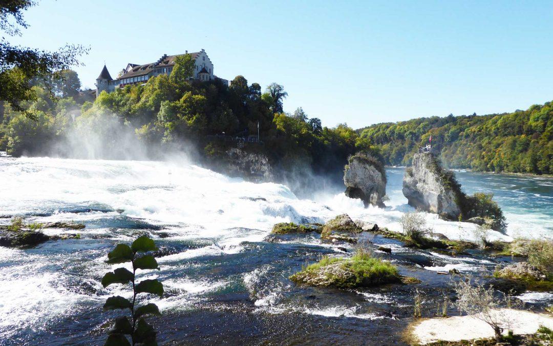 Bewohnerausflug zum Rheinfall