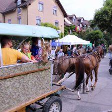 Bindersgarten-Herbstfest-2019-08